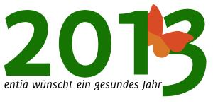 gesundes-jahr-2013